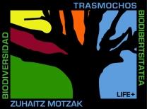 logo zuhaitz motzak offset